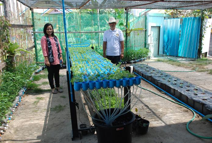 เกษตรต้นแบบชุมชนเมืองweb-10