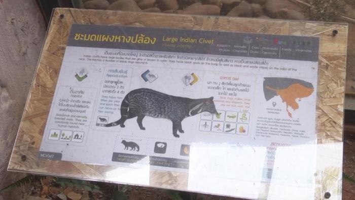 ยันไม่พบไข้หวัดนกในสวนสัตว์5