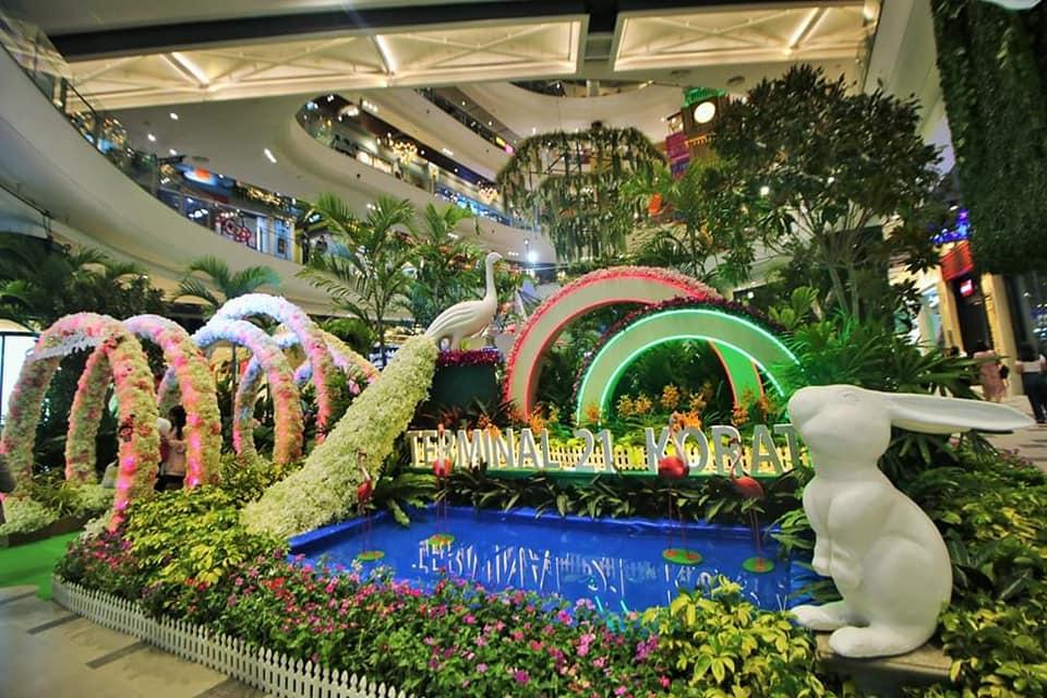 (ภาพชุด) งดงามเกินบรรยาย เทอร์มินอล21 โคราชเนรมิตห้างเป็นสวนไม้นานาพันธุ์ในงาน TERMINAL21KORAT BLOOMING ORCHIDS