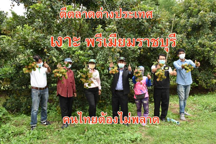 """""""เงาะ"""" พรีเมียมราชบุรีฝ่าวิกฤติโควิด ลุยตลาดโลก รุกขายออนไลน์ คนไทยพลาดไม่ได้"""